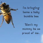 Introducing: Little Miss Bumble Bee
