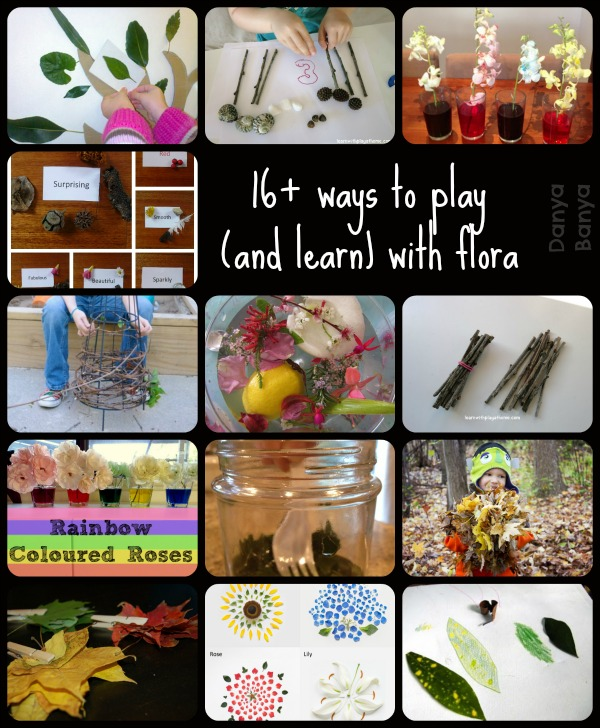 16+ ways to play (and learn) with flora
