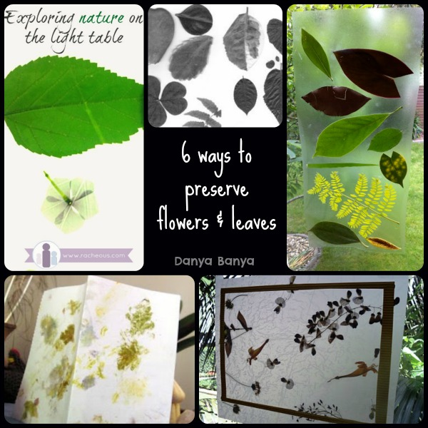 6 ways to preserve flowers & leaves