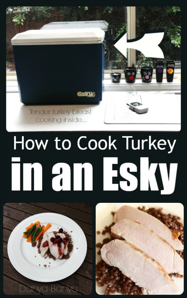 How to Cook Turkey breast in an Esky