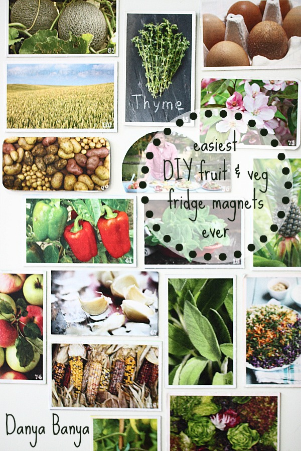 easiest DIY upcycled fruit & veg fridge magnets ever, and they are totally free