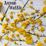 Aussie Wattle Craft for Kids