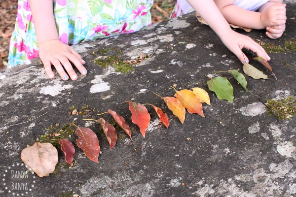 Collecting and sorting leaves
