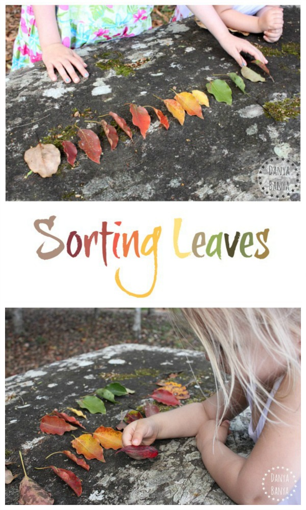 Sorting leaves by colour, pattern and shape - fun way for kids to play and learn outdoors ~ Danya Banya
