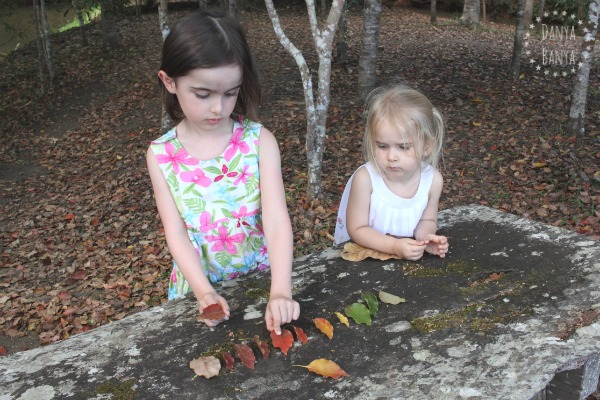 Sorting leaves by colour