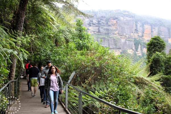 Boardwalks near Scenic World, with spectacular Blue Mountains cliffs