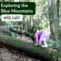 Exploring the Blue Mountains with Kids!