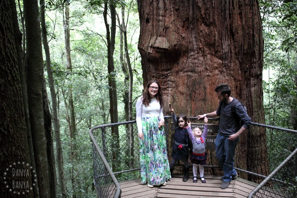 Obligatory family shot with the one thousand year old turpentine tree, Blue Mountains National Park