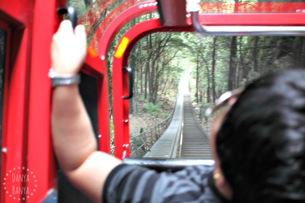 Riding the Scenic Railway, and this isn't even the steepest bit!