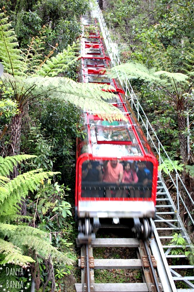Scenic Railway, near Katoomba, Blue Mountains, Australia