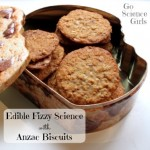 Edible Fizzy Science