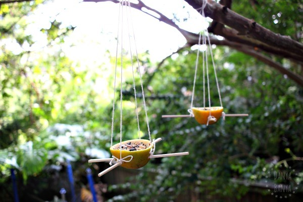 DIY Orange Peel Bird Feeders