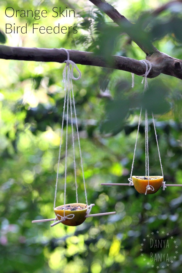 Orange Skin Bird Feeders