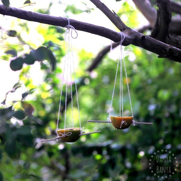 Orange Skin Bird Feeders to attract birds into your backyard