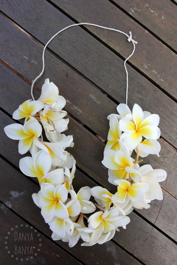 danya how frangipani nature flower lei to a craft make kids for banya necklace