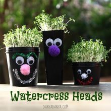 Watercress Heads