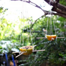DIY Orange Skin Bird Feeders